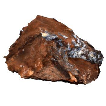 versteinertes Holz Standobjekt aus Ungarn, Mineralien, Natur Stein, Gesteine | N984
